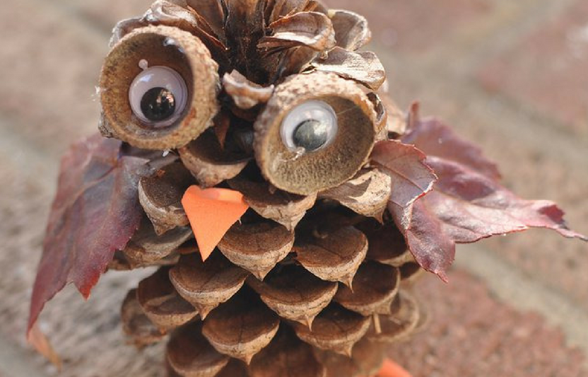 """Hoo"" knew you could transform a pinecone into such an adorable creature?"