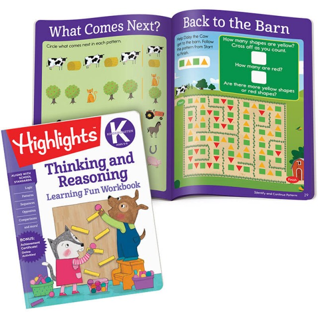 Thinking and Reasoning book plus lessons and puzzles about patterns