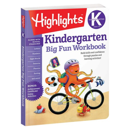 Big Fun Workbooks