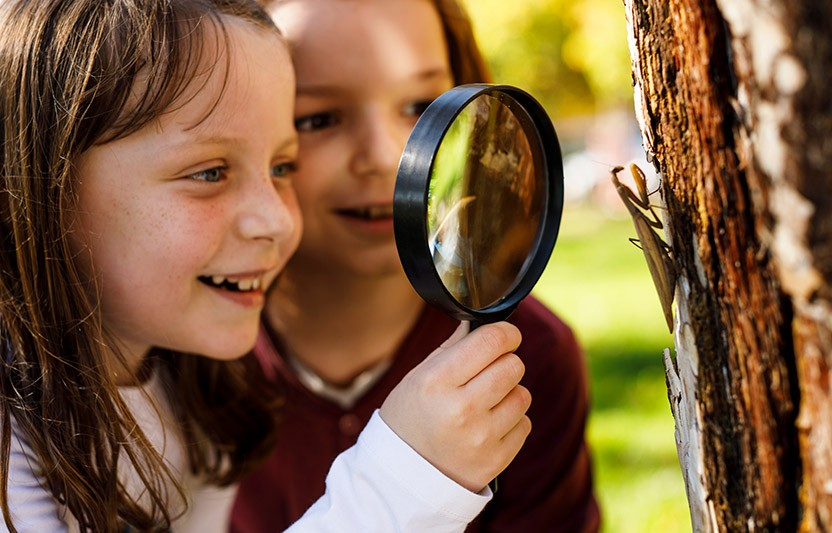 The Link Between Learning And Child >> The Surprising Link Between Outdoor Learning And Classroom Behavior